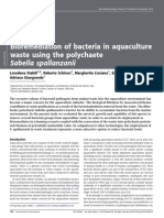 Bioremediation of Bacteria in Aquaculture Waste Using Sabella Spallanzanii