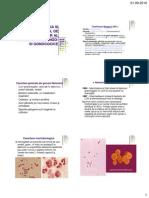 Diagnostic Infectii Meningo- Gonococice