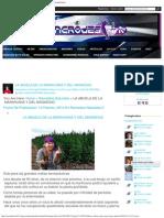 La Abuela de La Marihuana y Del Magnesio - Sincro-Destino