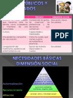 ASUNTOS PÚBLICOS Y PRIVADOS