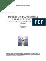 Proyecto Transcursividades 2013 Para Difundir
