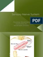 3.Update sensorik-motorik Neuropsikiatri.ppt
