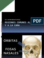 puntos-cefalometricos-1221190804349811-9
