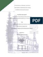SUEÑOS CERCADOS.pdf