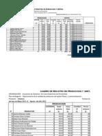 Registro de Produccion y Ventas