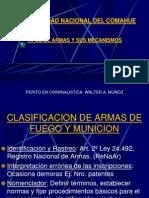 TIPOS DE ARMAS.ppt