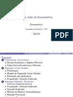 Uma visão de econometria