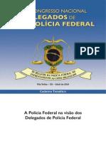 Caderno_Tematico_VICNDPF