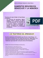 Fundamentos Biologicos Del Aprendizaje y Memoria