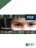IDH Florestas Minas
