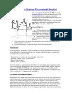 Manual 2 - Service Strategy - Estrategia Del Servicio