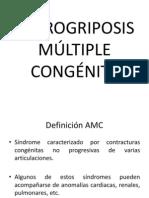 Manifestaciones clínicas (artrogriposis) (2)