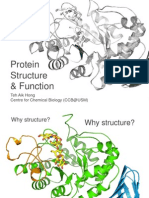 A brief introduction to protein structure and X-ray crystallography