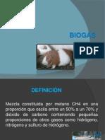 Biogas Diapositiva Convalidacion