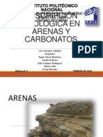 Litologia en Arenas y Carbonatos Final