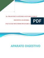 APARATO DIGESTIVO combatibilidad 1