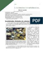 1 Tema 09 Invertebrados