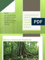 Características distintivas de las regiones naturales del mundo