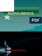2-5_Biopolimeros