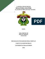 Laporan Praktikum Diaglin Sapi Dan Kuda_Irwan Ismail