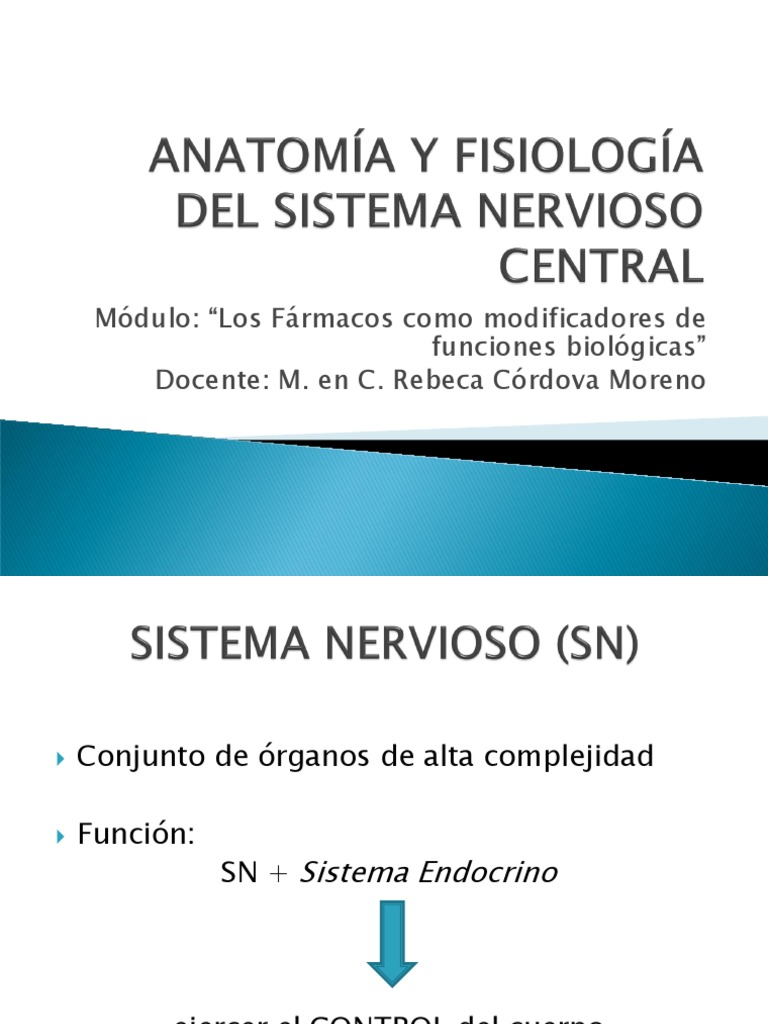 ANATOMÍA Y FISIOLOGÍA DEL SISTEMA NERVIOSO CENTRAL.modificada ...