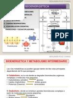 Tema 2 Bioenergetica
