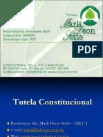 04_TUTELA-CONSTITUCIONAL