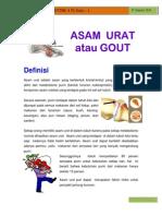 Newsletter 70 Edisi 1 - Asam Urat 310120111 Copy