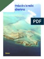 Tema 12 Introducci n a Los Medios Sedimentarios