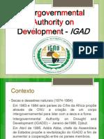 Slides - IGAD (1)