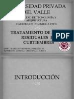 presentacion DEL PERFIL.pptx