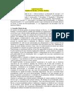 CAPITULO VIII.doc