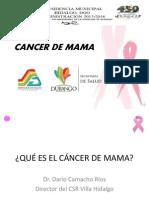 EL CÁNCER DE MAMA