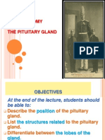 01-Anatomy of Pituitary Gland 1