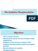 Oxidative Phosphorylation Ma 2011-3