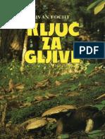 Ivan Focht - Kljuc Za GLJIVE