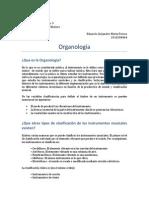 Organologia- Eduardo Motta - 12003636 -LISO