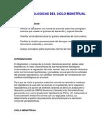Bases Fisiologicas Del Ciclo Menstrual