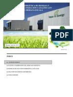 Presentacion W2E  Oxidación catalitica de RSU abril 2012 para Binicsa