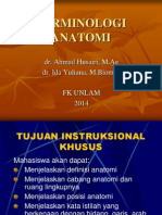 Terminologi Anatomi Ida