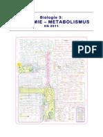 Skript zur Vorlesung Biochemie/Metabolismus