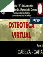 2- CABEZA - CARA.pdf