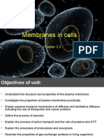 Membranes in Cells