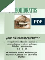 addi-03carbohidratosparte1-1233017079315163-1