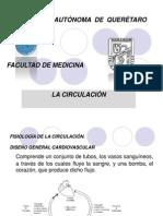 Fisiologia de La Circulacion 1