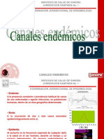 5.2 Canales Endemicos