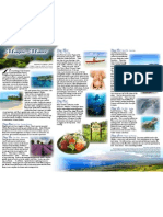 FULL MOON Vision Quest to Maui with Peter Kater (brochure pt 2)