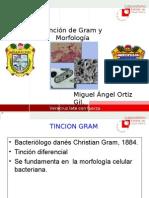 Tincion Gram y Morfologia Bacteriana LESP [PQCMAOG]