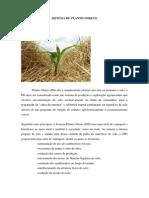 SISTEMA DE PLANTIO DIRETO.docx