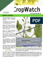 Adelaide Hills Crop Watch 091009
